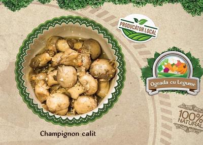 salata de ciuperci champignon calite