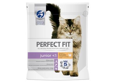 Perfect fit cat junior